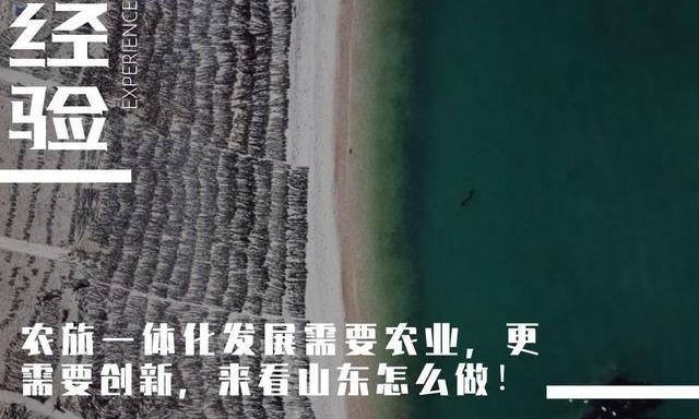 """连续5年上榜""""中国十大最美乡村"""",山东的农旅一体化为啥这么牛"""