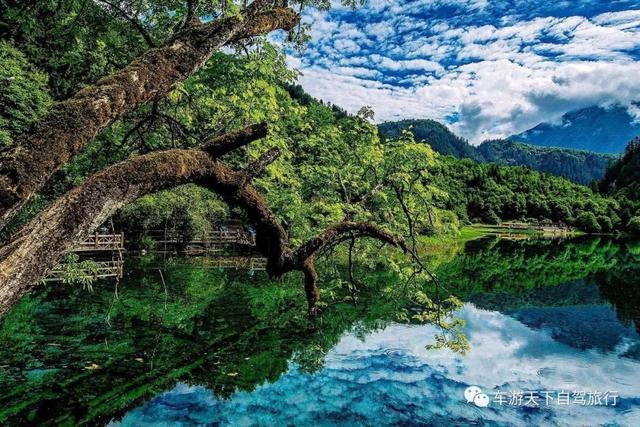 全国旅游大省排行榜,哪些是大家必看的美景,全找齐了!
